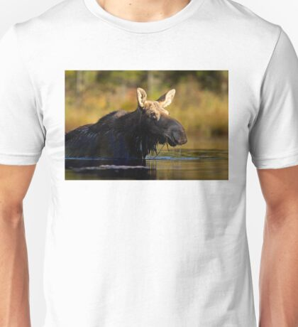 Swimming with Moose - Algonquin Park, Canada T-Shirt
