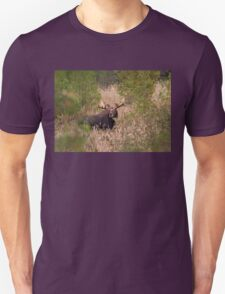 Moose in rut - Algonquin Park, Canada Unisex T-Shirt