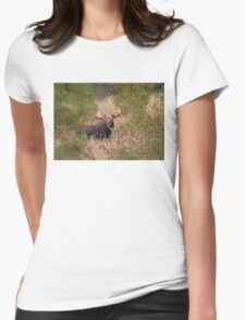 Moose in rut - Algonquin Park, Canada Womens Fitted T-Shirt
