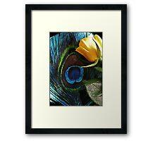 Peacock's Rose Framed Print