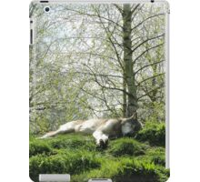 Dreaming Of Paradise iPad Case/Skin