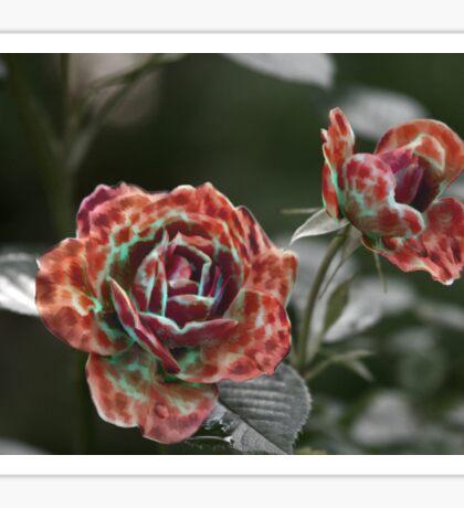 Furry Roses Sticker