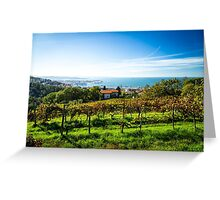 The gulf of trieste in a sunny day Greeting Card