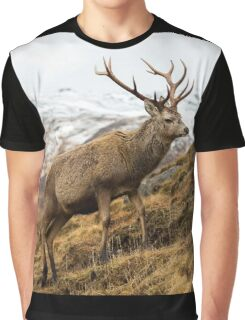 Royal Red Deer Stag in Winter Graphic T-Shirt