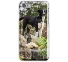 Terrier Standing Guard iPhone Case/Skin