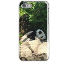 Lazy days at the national zoo iPhone Case/Skin