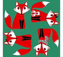 RED FOX PATTERN Photographic Print