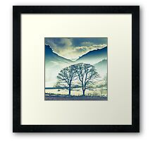 Pair of Trees Framed Print