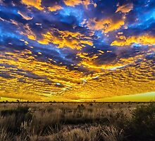 Tanami Desert Sunset by Jan Fijolek