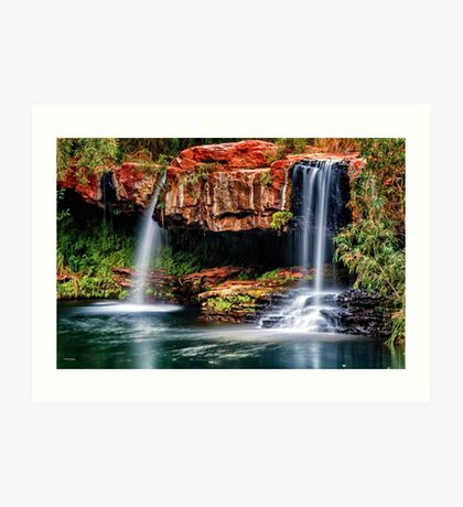 Fern Pool Falls Art Print