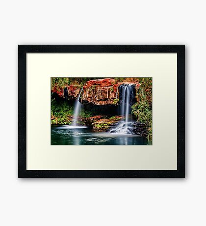 Fern Pool Falls Framed Print