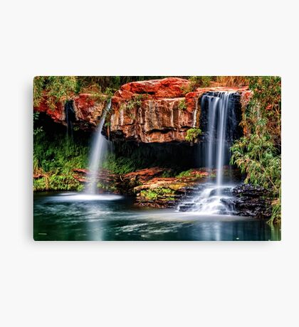 Fern Pool Falls Canvas Print
