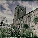 St Chads Spring by appfoto