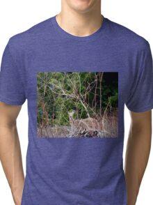 White Tailed Deer through Brush Tri-blend T-Shirt