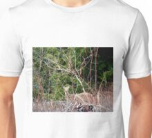 White Tailed Deer through Brush Unisex T-Shirt