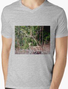 White Tailed Deer through Brush Mens V-Neck T-Shirt