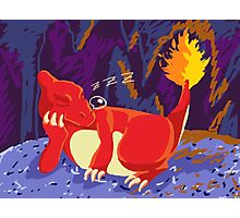 Sleeping Charmeleon Photographic Print