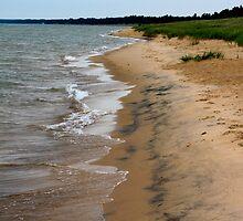 Lake Michigan Beach by Joy Fitzhorn