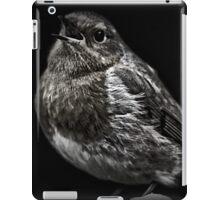 Mr Robin iPad Case/Skin