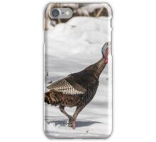 Wild Turkey 2016-1 iPhone Case/Skin