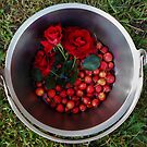 Autumn harvest with roses and crabapples by HeidiArts