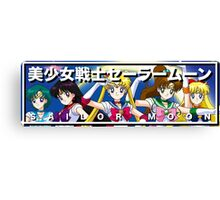 Sailor Moon and Friends Canvas Print
