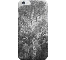 Easter enlightment iPhone Case/Skin