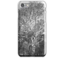 Easter enlightment iPhone Case/Skin