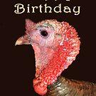 Turkey Portrait, Happy Birthday, Humor by Mary Taylor