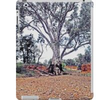 Beauty in the Outback iPad Case/Skin