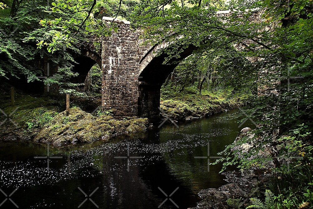 Holne Bridge by Country  Pursuits