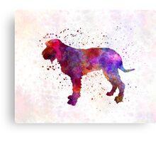 Blue Gascony Griffon in watercolor Canvas Print