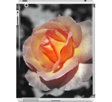 A gentle touch iPad Case/Skin