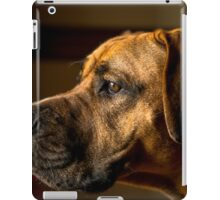 Standing Guard iPad Case/Skin