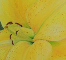 Yellow Lily Sticker