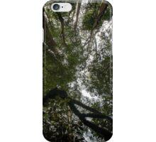 Skyview Through Tree Tops II iPhone Case/Skin