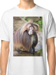 Baboon Looking At Me Classic T-Shirt