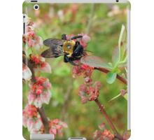 Bumble Bee on a Blueberry Bloom iPad Case/Skin