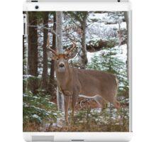 Bullet - White-tailed deer iPad Case/Skin