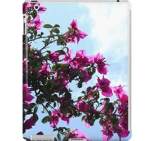 Blossoms on a Tree iPad Case/Skin