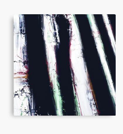 First shadow Canvas Print