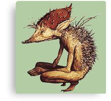 Fantasy Hedgehog from Faeries Canvas Print