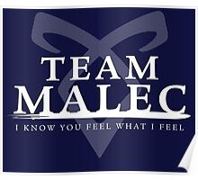 Shadowhunters - Team Malec Poster