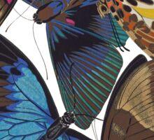 FF - Buttefly-1 Sticker