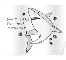 I don't care for your misogyny Poster