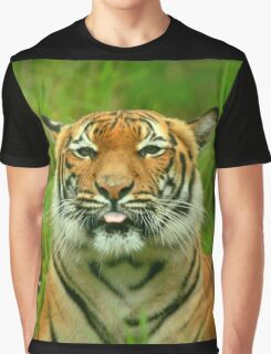 Tiger: Raspberry Graphic T-Shirt