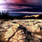 Ancient Mud by Barbara D Richards