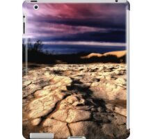 Ancient Mud iPad Case/Skin