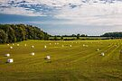 Making Hay by PhotosByHealy