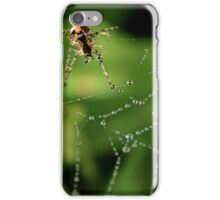 Spider Web & Dew Drops iPhone Case/Skin